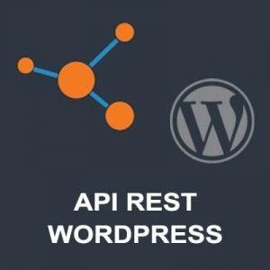 API WORDPRESS