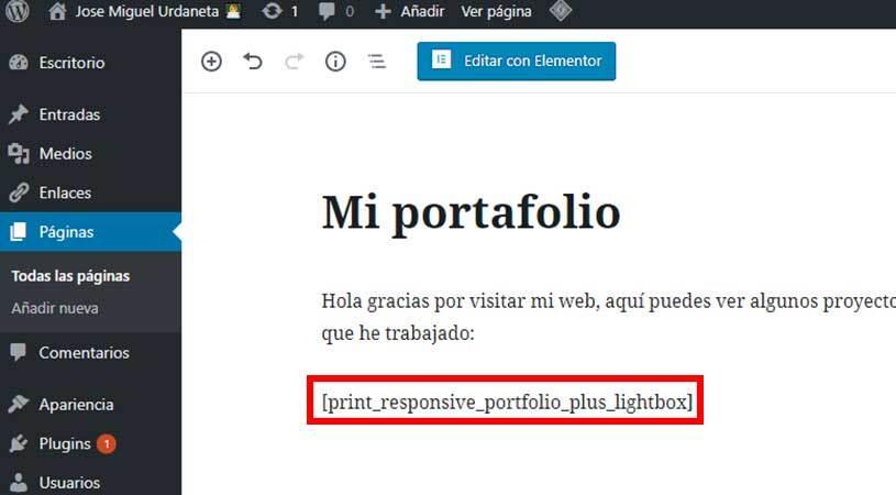 mostrar-portfolio-en-pagina-wordpress